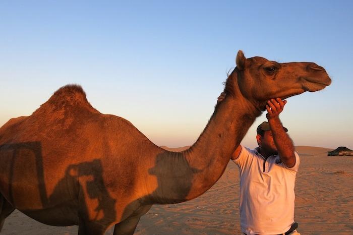 desierto liwa oasis amaras la moda abu dhabi desert  2