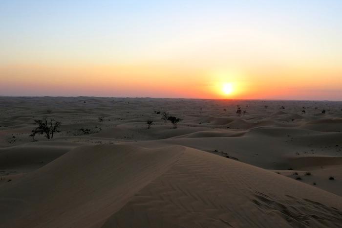 desierto liwa oasis amaras la moda abu dhabi desert  4